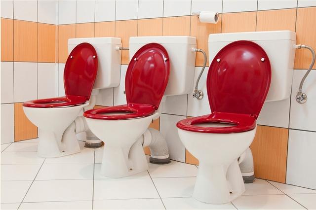Gradinita Csipike toalete